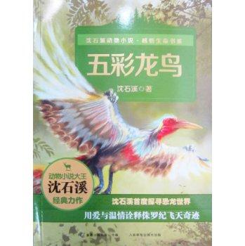 沈石溪动物小说·感悟生命书系:五彩龙鸟