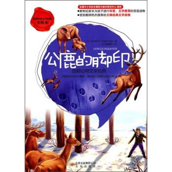 公鹿的脚印:西顿动物文学经典(美绘本)