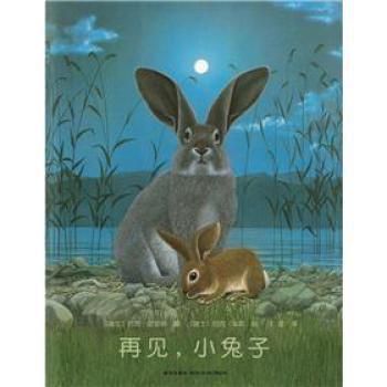 约克·史坦纳:再见,小兔子