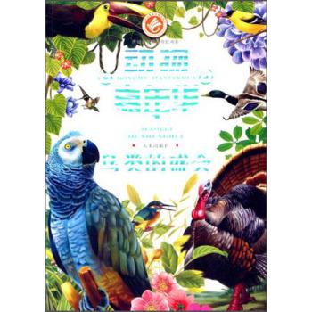 关于动物书籍封面设计素材